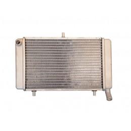 Radiador rs 125